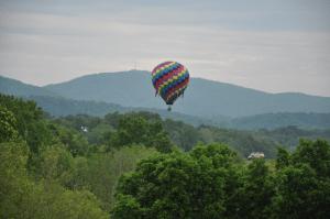 Balloonist in backyard