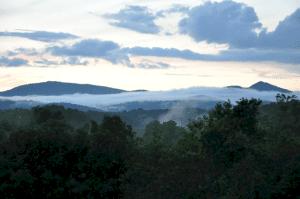Forest, VA Summer 2013