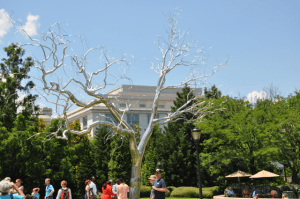 Shiny tree sculpture on sunny day in DC